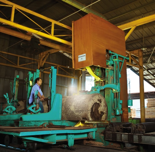 Saw mill facility